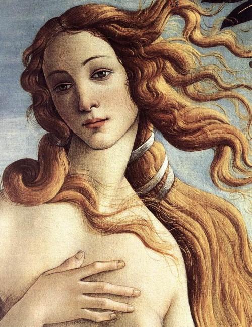Cabraal l'aventureux (épisode 4) venus_botticelli-e1348080544466